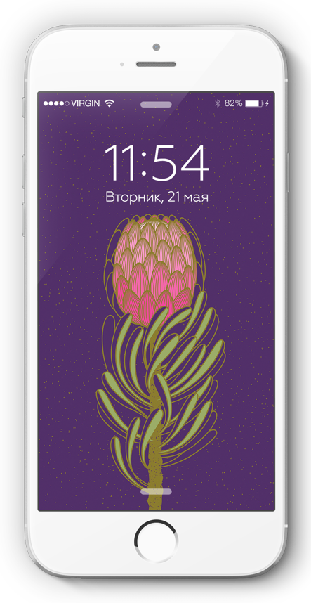 Free wallpapers for phone by illustrator Tatiana Voloshyna